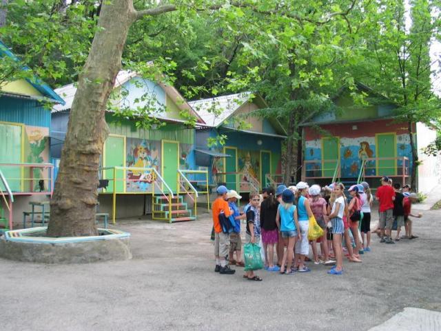 Организация детских оздоровительных лагерей